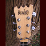 Eastwood Guitars - Eastwood JR Elite