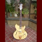 Eastwood Guitars - Eastwood Savannah Amber