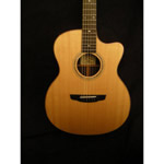 Goodall Guitars - Goodall RCJC (used)