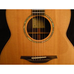 Mcilroy A30c-Rosewood/Sitka Preowned