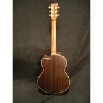 Mcilroy AS30c Rosewood/Sitka