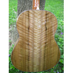 Morgan Guitars - Morgan Concert - French Walnut