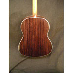 Morgan Guitars - Morgan Concert - Rosewood