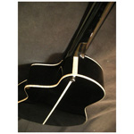 Veillette 12 String Bari